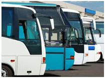 Freeport Transportation