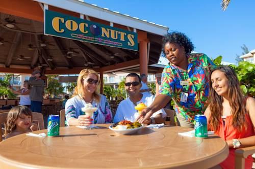 island-seas-resort-coconuts