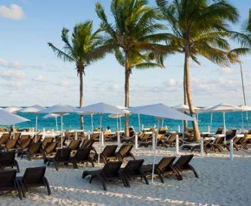 1 Night Cruises To Grand Bahama Island 1 Night Cruises